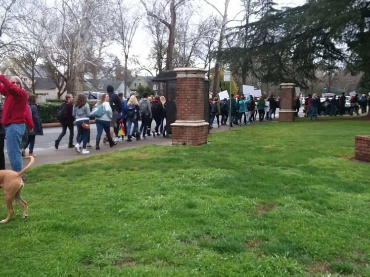#NationalSchoolWalkout Chico, CA
